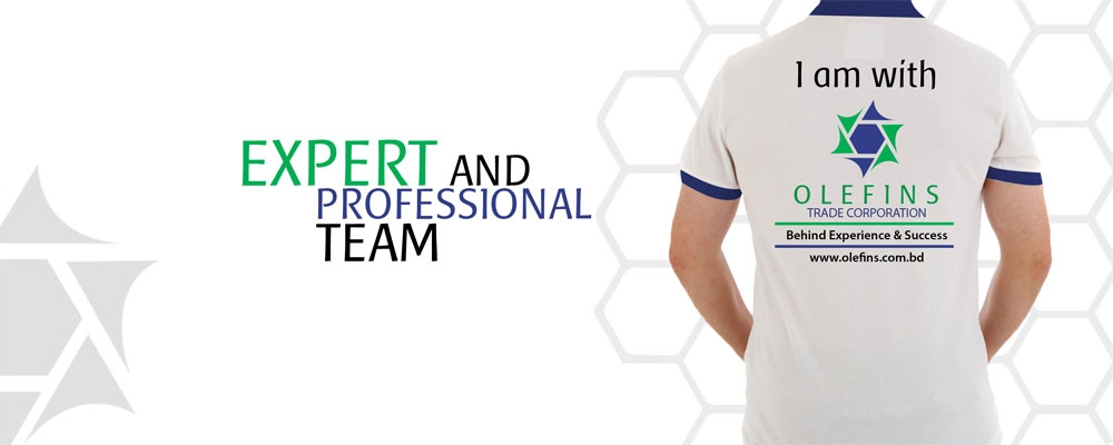 Expert  Professional Team