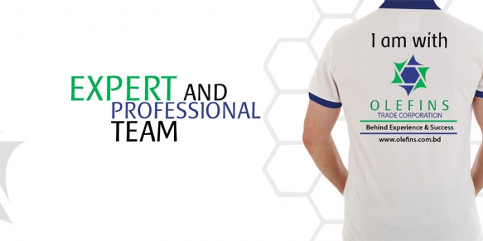 Expert  Professional Team